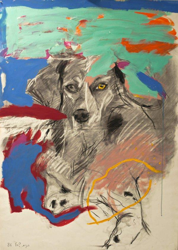 הכלבה ג'וזי, ציור חגית שחל